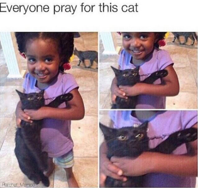 everyone pray for this cat, little girl holding cat by its neck
