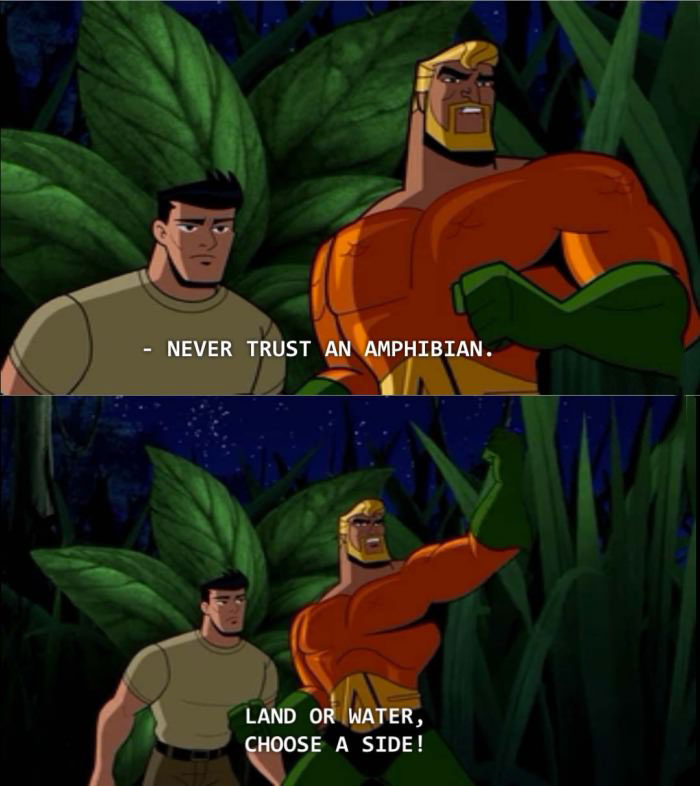 never trust an amphibian, land or water choose a side!, lessons in life from aquaman
