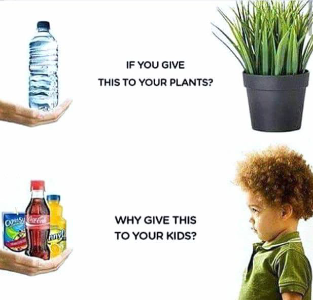 if you give this to your plants, why give sugar drinks to your kids?