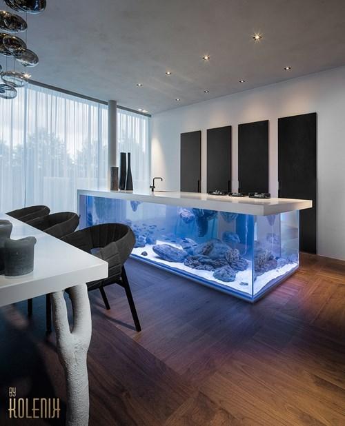 just a giant kitchen island aquarium