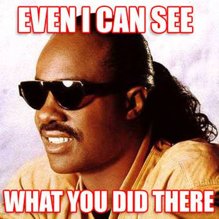 even i can see what you did there, blind stevie wonder, meme