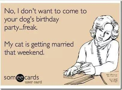 no i don't want to come to your dogs birthday party freak, my cat is getting married that weekend, ecard