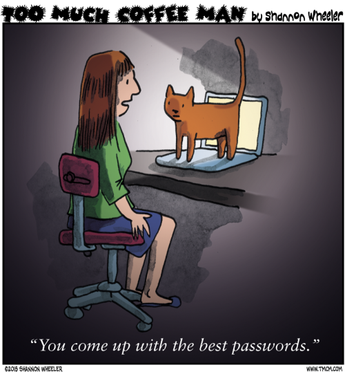 you come up with the best passwords, cat on keyboard