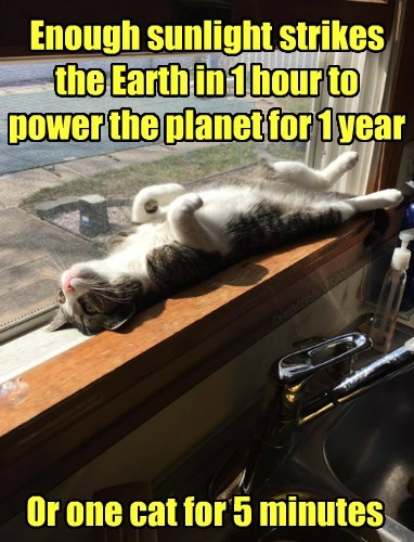 enough sunlight strikes sthe earth in one hour to power the planet for one year, or one cat for 5 minutes