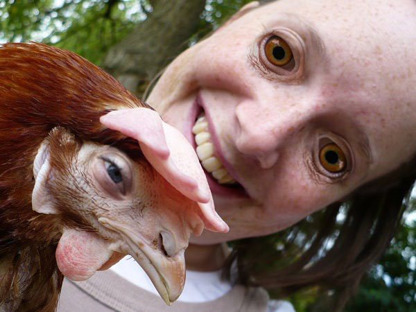 worst eye swap ever, girl and chicken