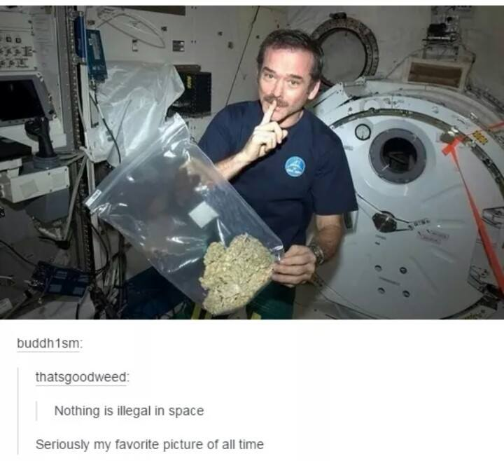 nothing is illegal in space, astronaut with a huge bag of weed