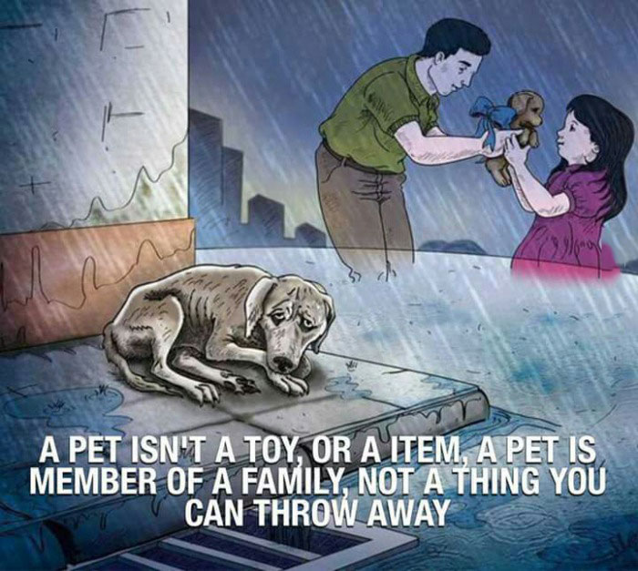 a pet isn't a toy or an item, a pet is a member of a family not a thing you can throw away
