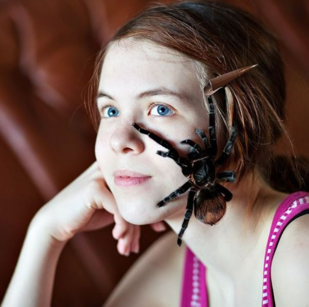 little miss muffet the early years, spider on girl's face