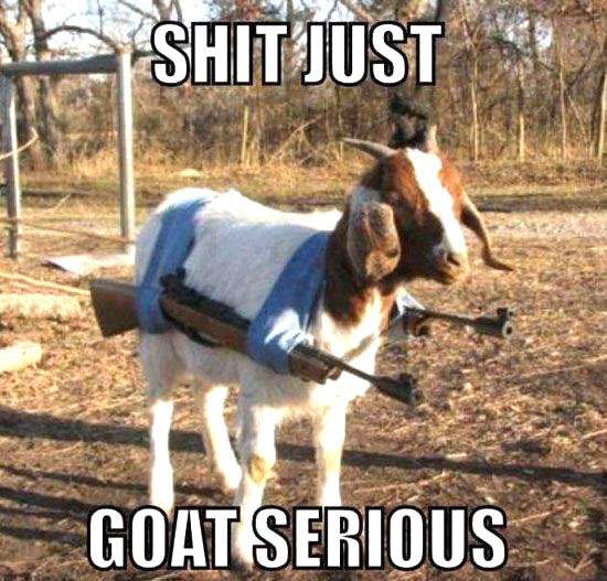shit just goat serious, machine guns on the sides of a goat, meme