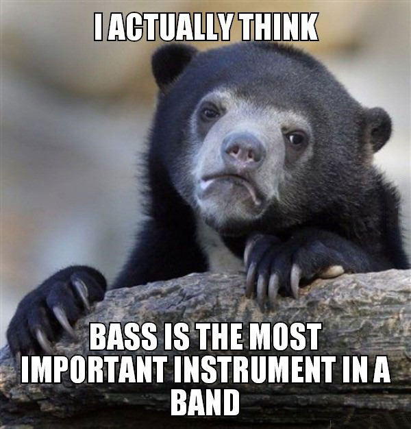 i actually think bass is the most important instrument in a band, confession bear, meme