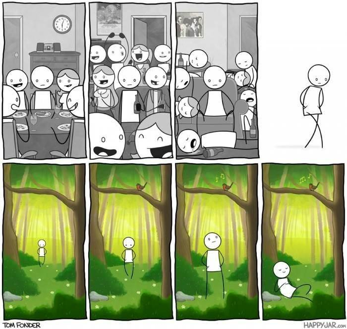 some people just prefer the simple life, introverts will understand, comic