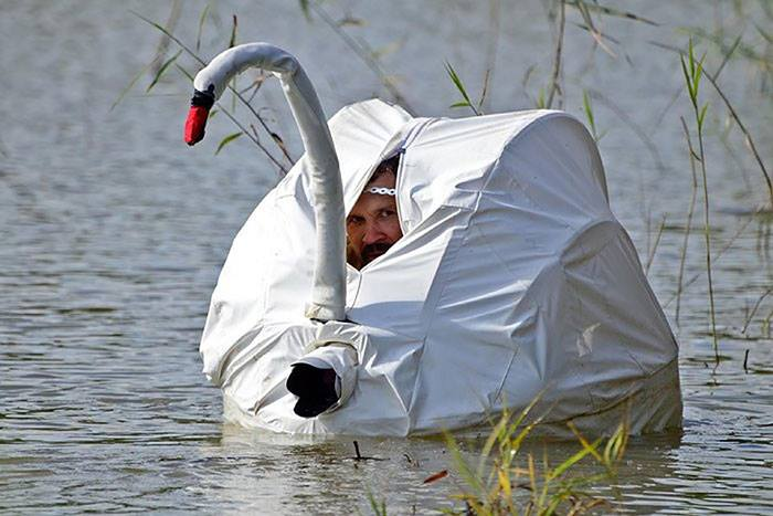 swan tent for wilderness photographers, stealth, lol