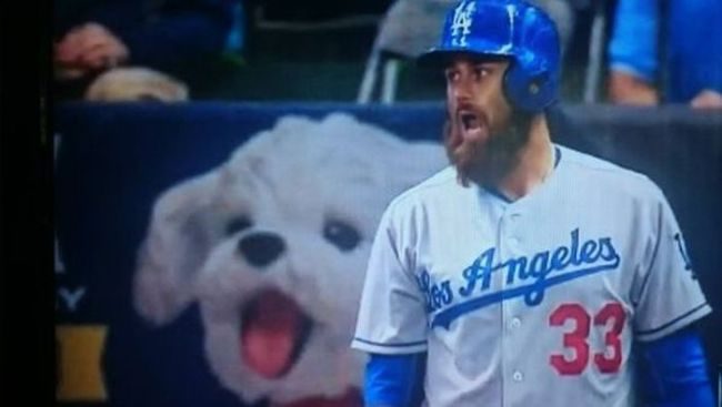 baseball player and dog have mouths wide open, lol
