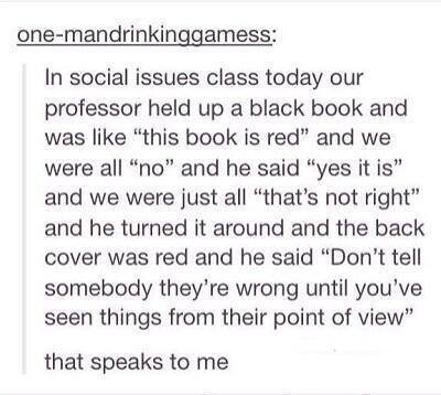 don't tell someone they're wrong until you've seen things from their point of view, this book is red
