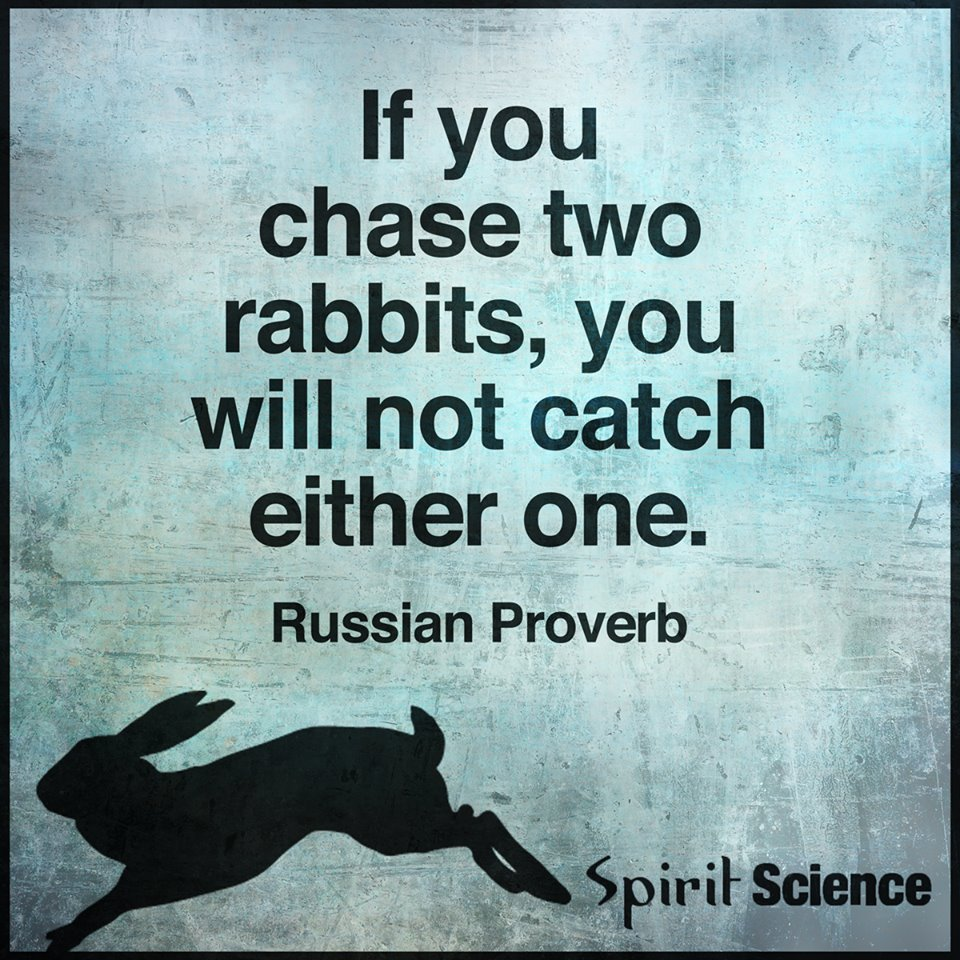 if you chase two rabbits you will not catch either one