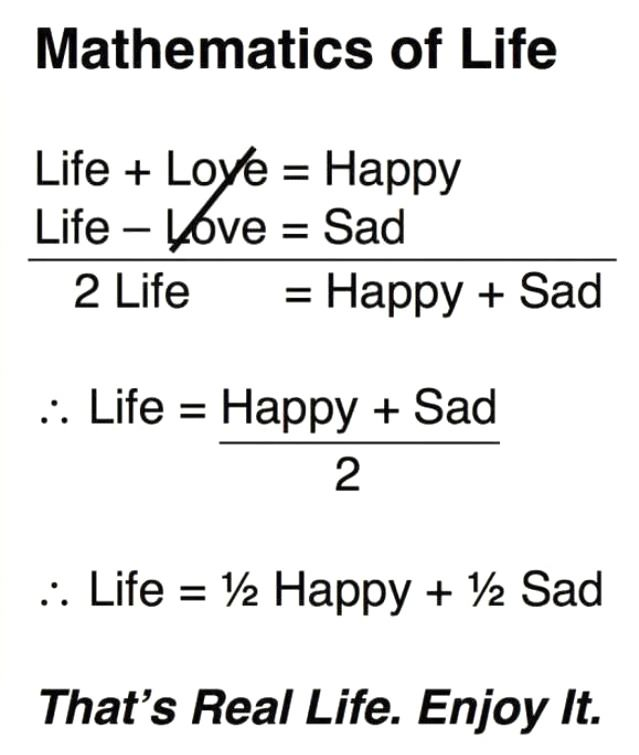 the mathematics of life prove that life is half happiness and half sadness, just reality