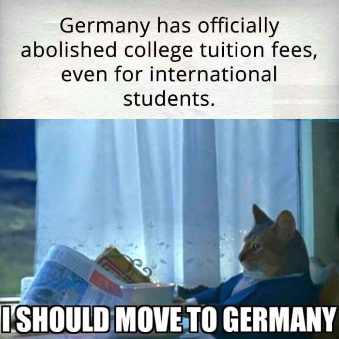 germany has officially abolished college tuition fees even for international students i should move to germany newspaper cat meme 1433894848 newspaper cat realization meme justpost virtually entertaining