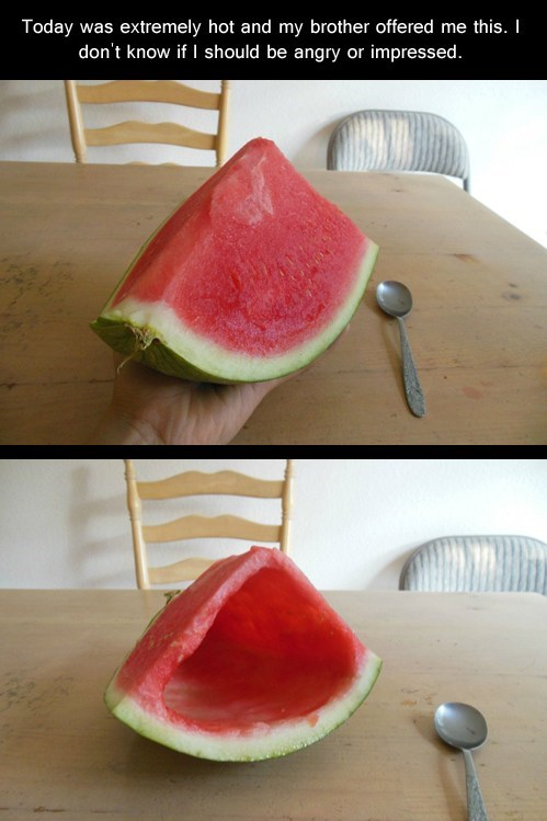 today was extremely hot and my brother offered me this, i don't know if i should be angry or impressed, hollowed out watermelon