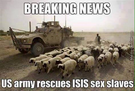 breaking news us army rescues isis sex slaves, meme