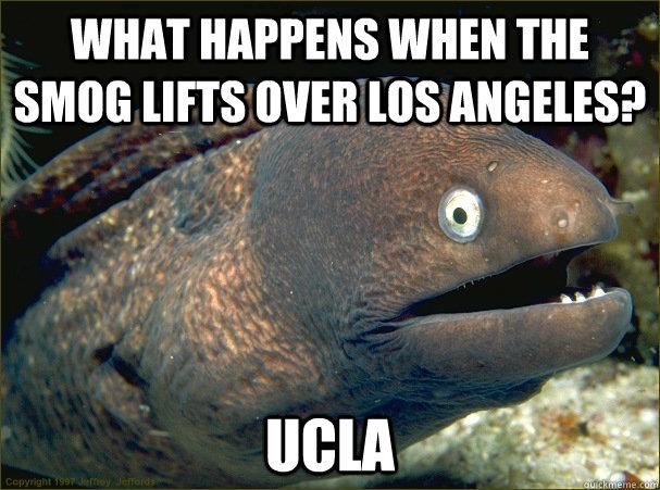 what happens when the smog lifts over los angeles?, bad joke eel, meme