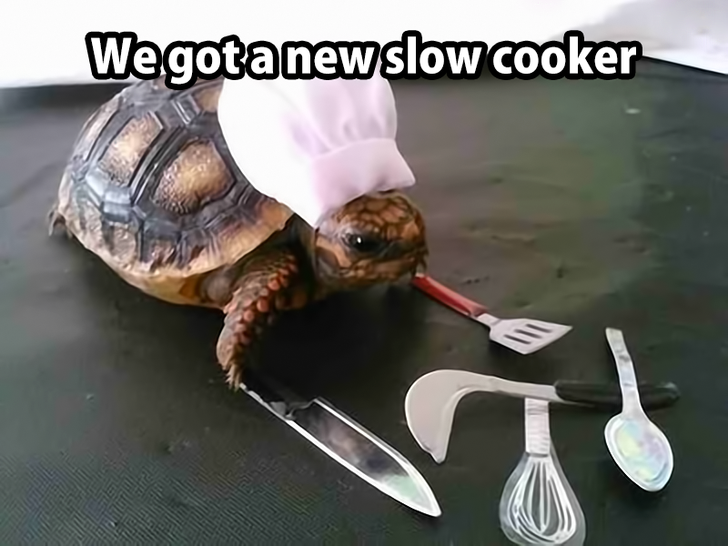 we got a new slow cooker, chef turtle