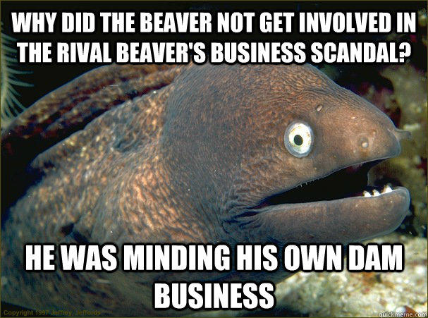 why did the beaver not get involved in the rival beaver's business scandal, he was minding his own dam business, bad joke eel, meme