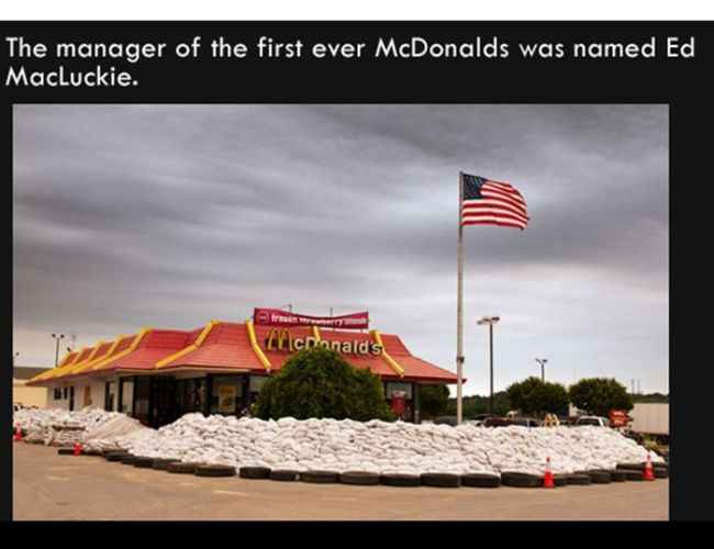 the manager of the first ever mcdonald's was named ed macluckie, fun facts