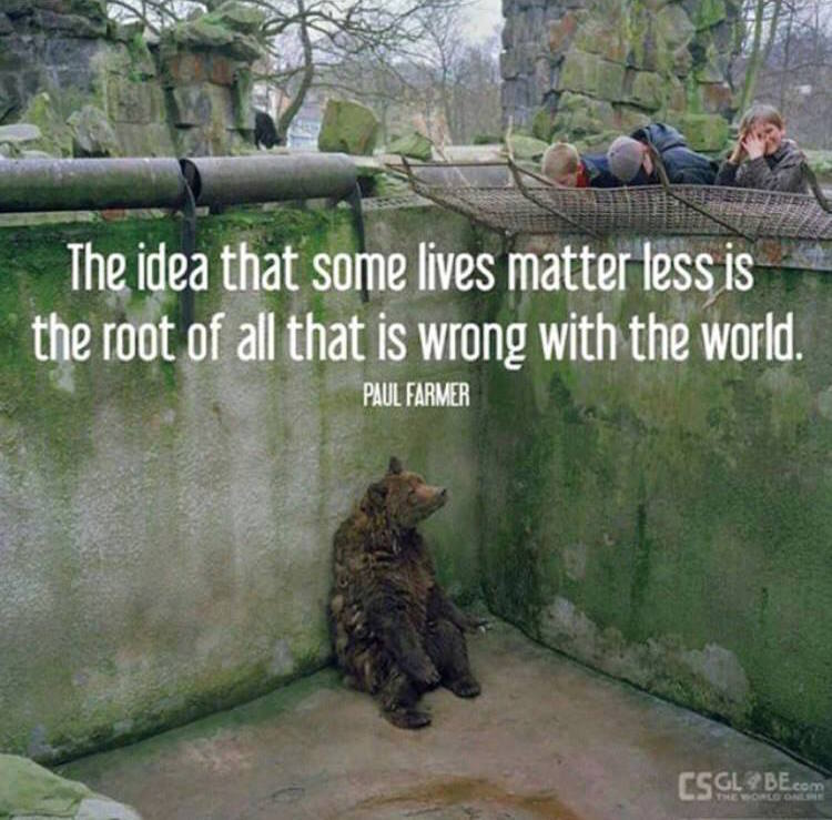 the idea that some lives matter less is the root of all that is wrong with the world