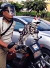 you'll never be as cool as this cat riding this motorcycle with a helmet and sunglasses