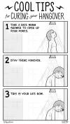 cool tips for curing your hangover, take a nice warm shower to open up your pores, stay there forever, this is your life now, comic