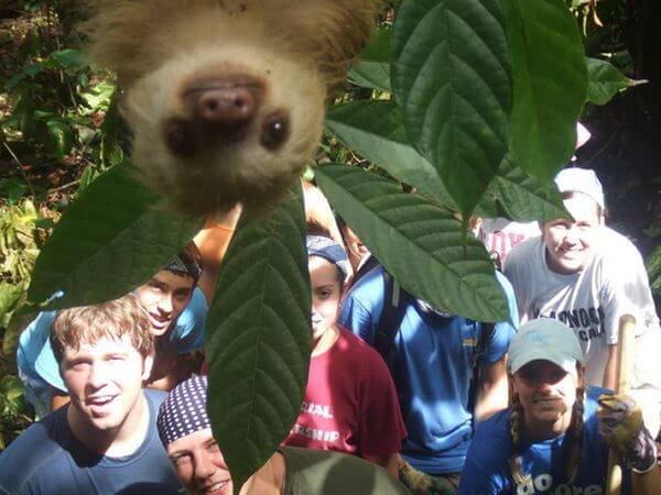 family portrait photobombed by a sloth