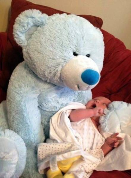 baby surprised to see giant bear sitting nearby