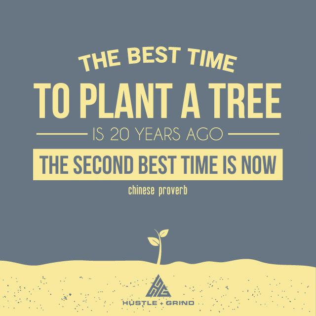 the best time to plant a tree is 20 years ago, the second best time is now, chinese proverb