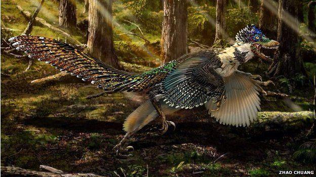 dinosaur find - velociraptor ancestor was winged dragon