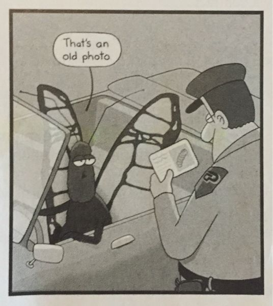 that's an old photo, cop pulling over a butterfly with a caterpillar