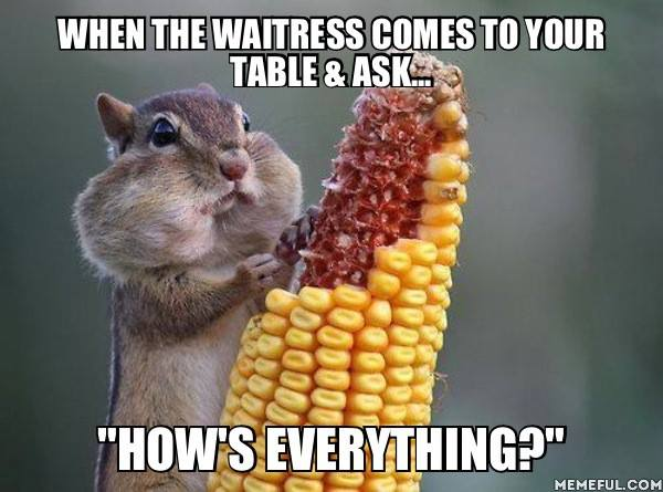 when the waitress comes to your table and asks how's everything?, meme