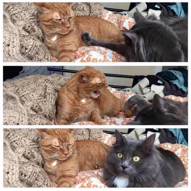 when you check to see if your girlfriend is still mad
