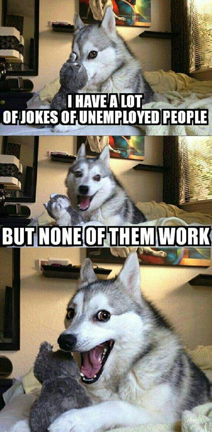 i have a lot of jokes of unemployed people, but none of them work, pun husky, meme