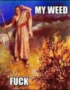 my weed fuck, moses in front of a burning bush, meme