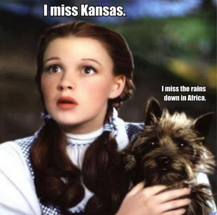 i miss kansas, i miss the rains down in africa, dorothy and toto