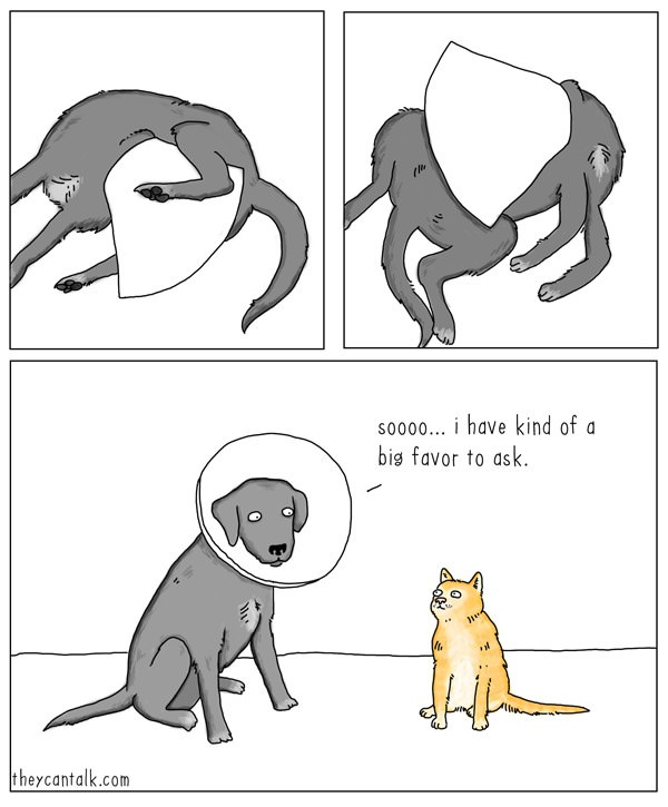 sooo i have kind of a big favour to ask, dog asking cat for scratches where he can't reach, comic