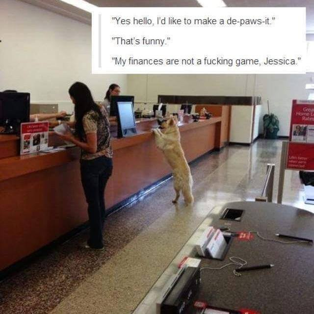 yes hello i'd like to make a de-paws-it, that's funny, my finances are not a fucking game jessica