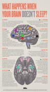 what happens when your brain doesn't sleep?, infographic