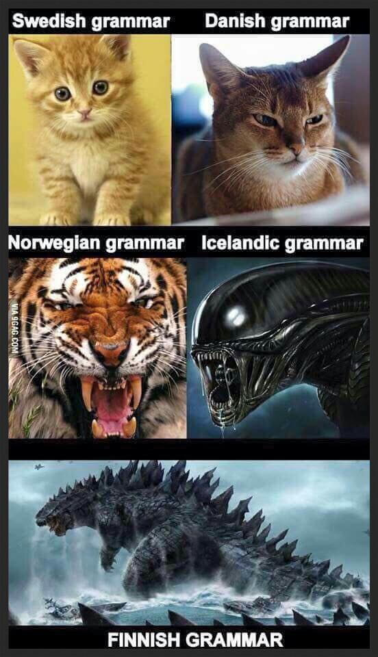 swedish grammar, danish grammar, norwegian gramma, icelandic grammar, finnish grammar, meme