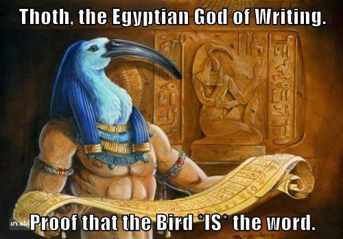 thoth the egyptian god of writing, proof that bird is the word, meme