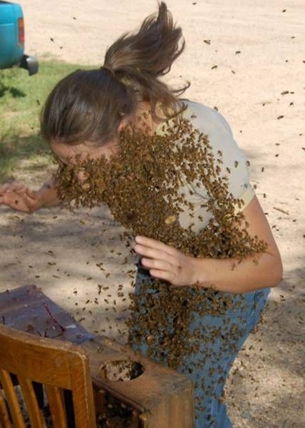 yep that's a beehive, girl covered in bees