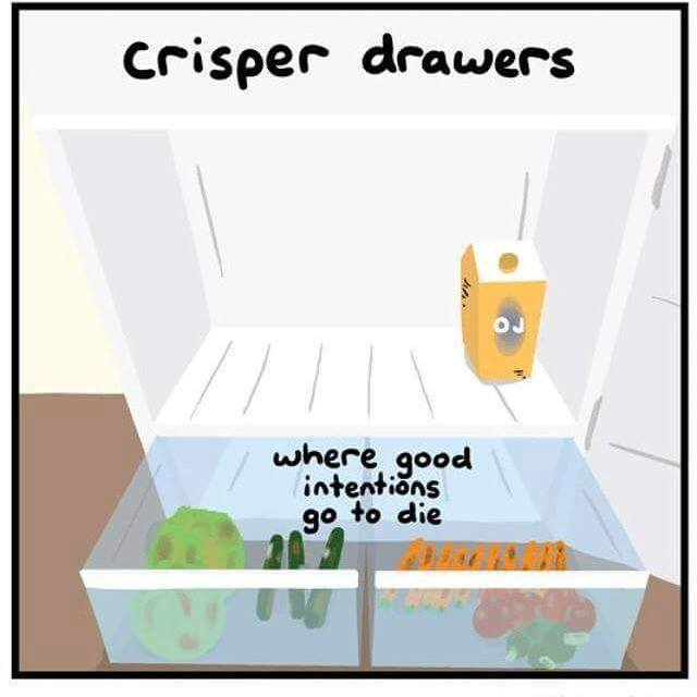 crisper drawers, where good intentions go to die