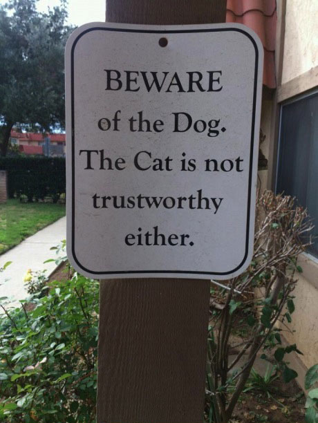 beware of the dog, the cat is not trustworthy either, funny sign