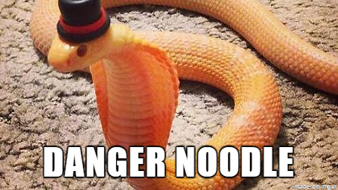 better names for animals, danger noodle