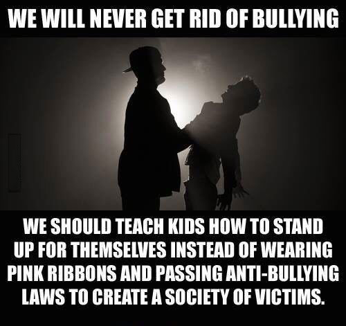 we will never get rid of bullying, we should teach kids how to stand up for themselves instead of wearing pink ribbons and padding anti-bullying laws to create a society of victims